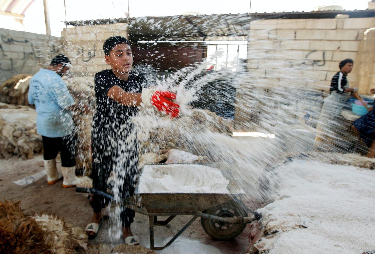 عامل يلقي الملح على جلد الغنم في سوق للماشية في النجف - REUTERS