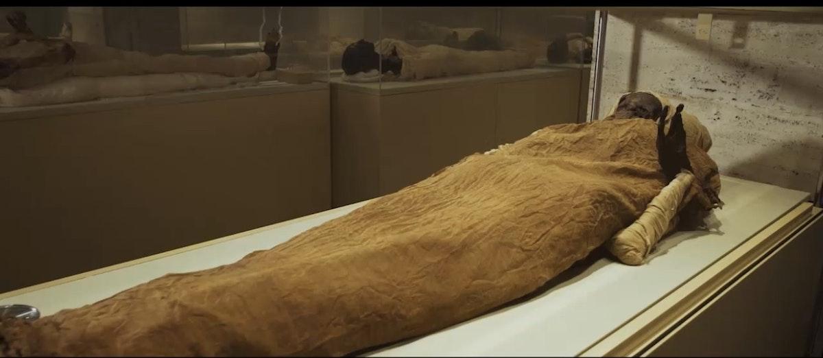 إحدى المومياوات قبل نقلها من المتحف المصري لمتحف الحضارة بالفسطاط -وزارة السياحة والآثار المصرية