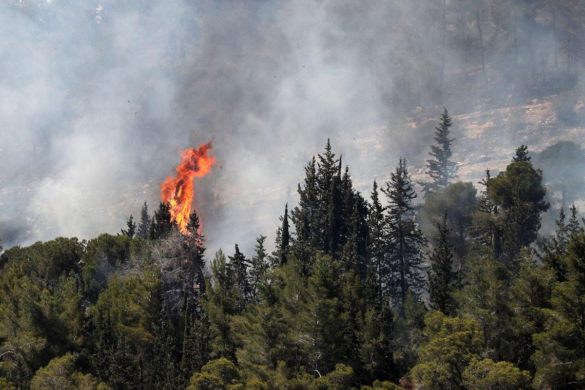 تصاعد الدخان وألسنة اللهب في غابة محيطة بقرية أبو غوش داخل الخط الأخضر - AFP