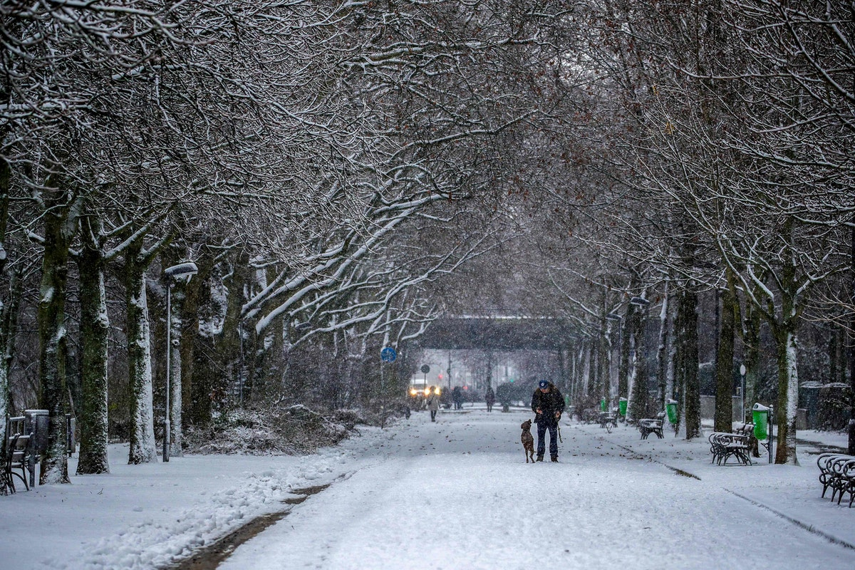 رجل يلعب مع كلبه في زقاق في حديقة بعد تساقط الثلوج - AFP