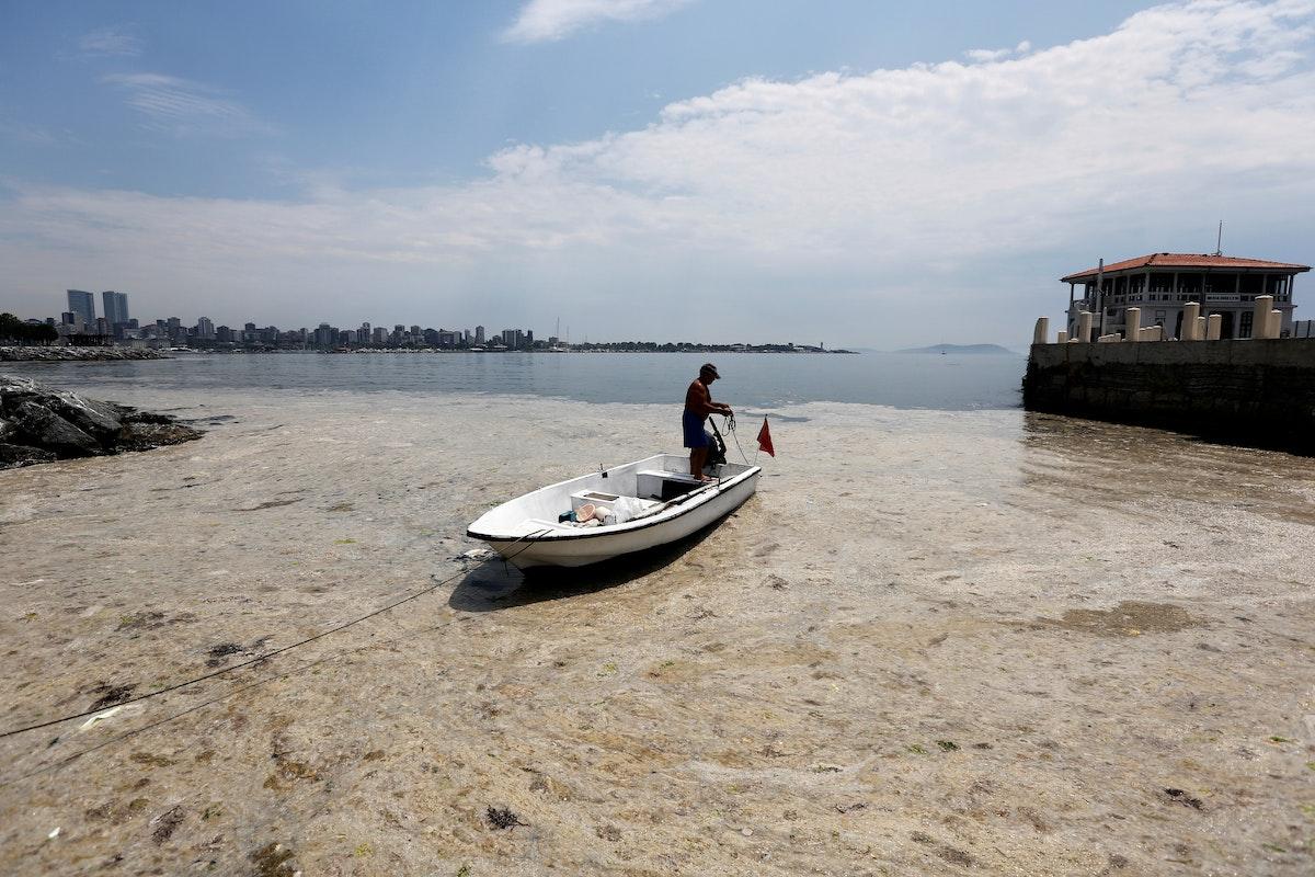 """""""مخاط البحر"""" يغطي بحر مرمرة في اسطنبول، تركيا، 7 يونيو 2021 - REUTERS"""
