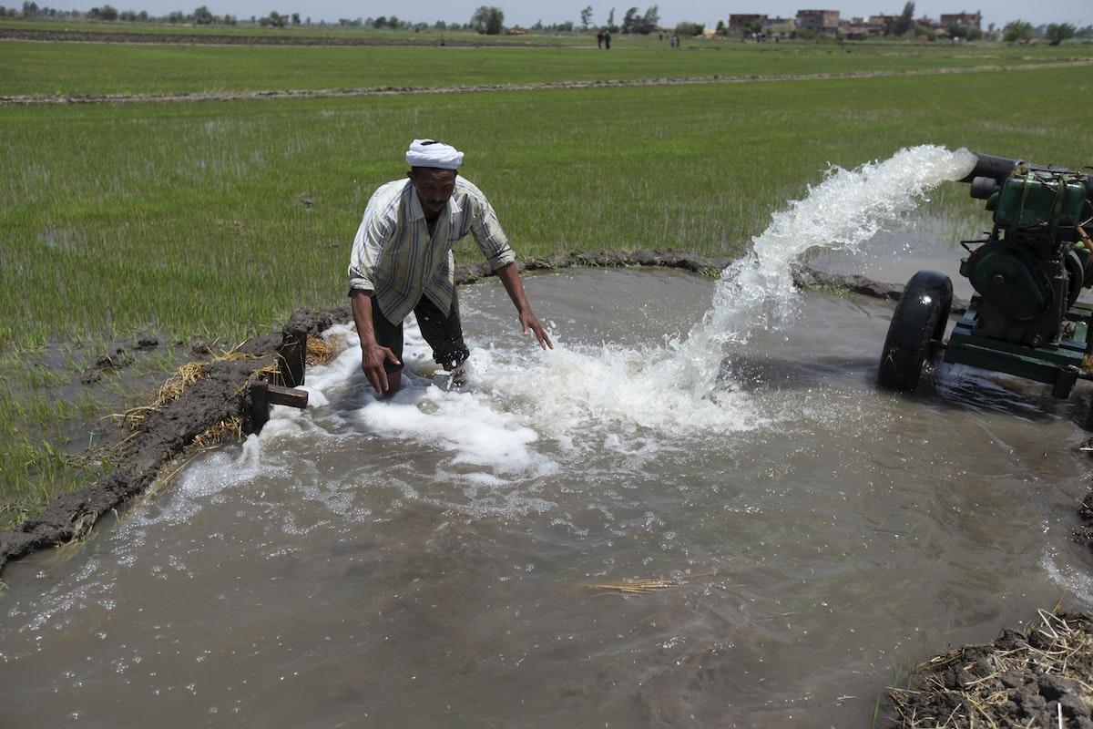 مزارع مصري يحاول ري أرضه عن طريق ضخ المياه من بئر في مزرعة تضررت من الجفاف بعد أن كانت سابقاً بنهر النيل في الدقهلية، شمالي القاهرة - REUTERS