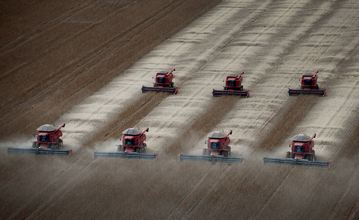 حصاد فول الصويا في مزرعة برازيلية، 27 مارس 2012 - Bloomberg